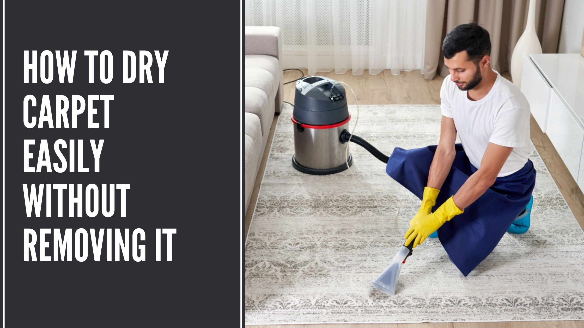 How To Dry Carpet Easily Without Removing It